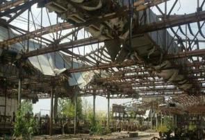 چوب حراج به صنایع ابریشمی گیلان/اساتید گیلان خواستار ورود سازمان بازرسی شدند