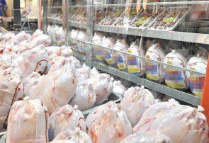 مرغ گیلان به طور غیر قانونی از استان خارج می شود