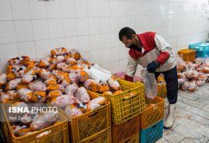 برخورد قانونی با مسامحه کنندگان در نظارت بر توزیع و افزایش قیمت مرغ در گیلان